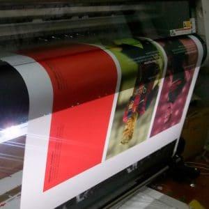 Vinilo blanco impreso