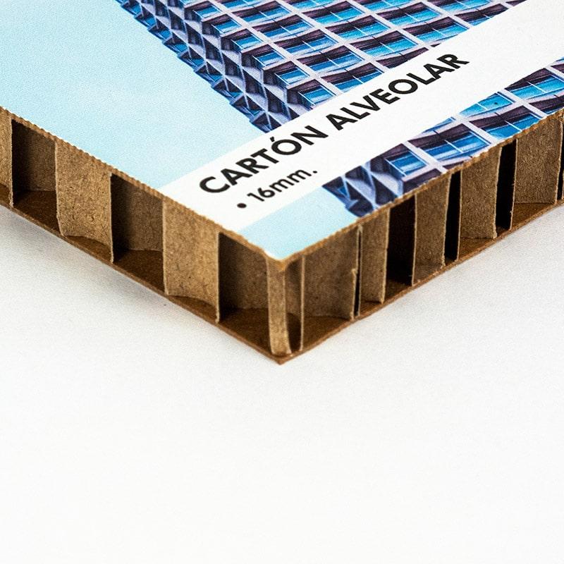 Carton alveolar